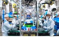 德国财经新闻网:越南正有效控制新一波新冠肺炎疫情