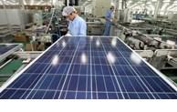 越南工贸部将实时跟进印度对越南产太阳能电池板的反倾销调查工作