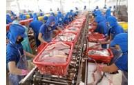 中国湛江港暂停接受来自11国的冻品到港