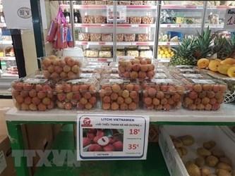 帮助越南企业将产品推销给欧洲消费者