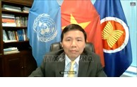 越南谴责针对阿富汗平民的袭击