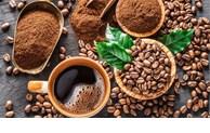 越南咖啡提高在希腊的市场份额