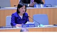 越南出席联合国人权理事会第47届会议