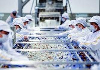 今年上半年,越南对东盟的商品出口价值呈增长趋势