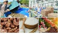 为出口中国的农产品企业纾困解难