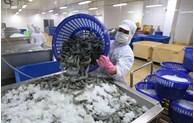 中国广州企业对越南水产品的进口需求大增