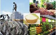 2021年越南与中国广东省农产品和食品交易会以在线方式举行