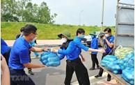 首都近5000名青年志愿参与防疫工作