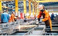 胡志明市拟定一套恢复生产的标准