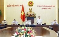 越南国会常务委员会第三次会议:对许多重要内容提出意见