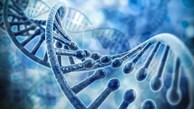 美国在越南建立东南亚最大基因解码中心