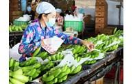 携手助推越南商品在外国市场顺利销售
