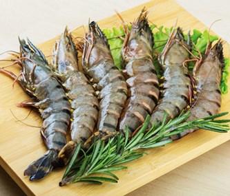 越南对西班牙的黑虎虾出口额增长1.5倍