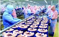 """2022年越南力争促使欧盟委员会取消对越南水产的""""黄牌"""""""