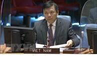 越南与联合国安理会:越南呼吁国际社会加强对刚果的支持