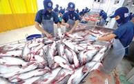 越南增加对埃及和阿联酋的茶鱼出口量