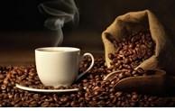 树立越南咖啡在北欧市场的品牌形象