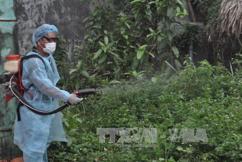 TP Hồ Chí Minh: Tăng cường phòng chống bệnh sốt xuất huyết và Zika