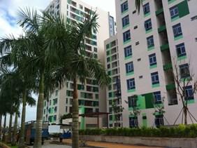 TP.Hồ Chí Minh phấn đấu xây dựng khoảng 20.000 căn nhà ở xã hội