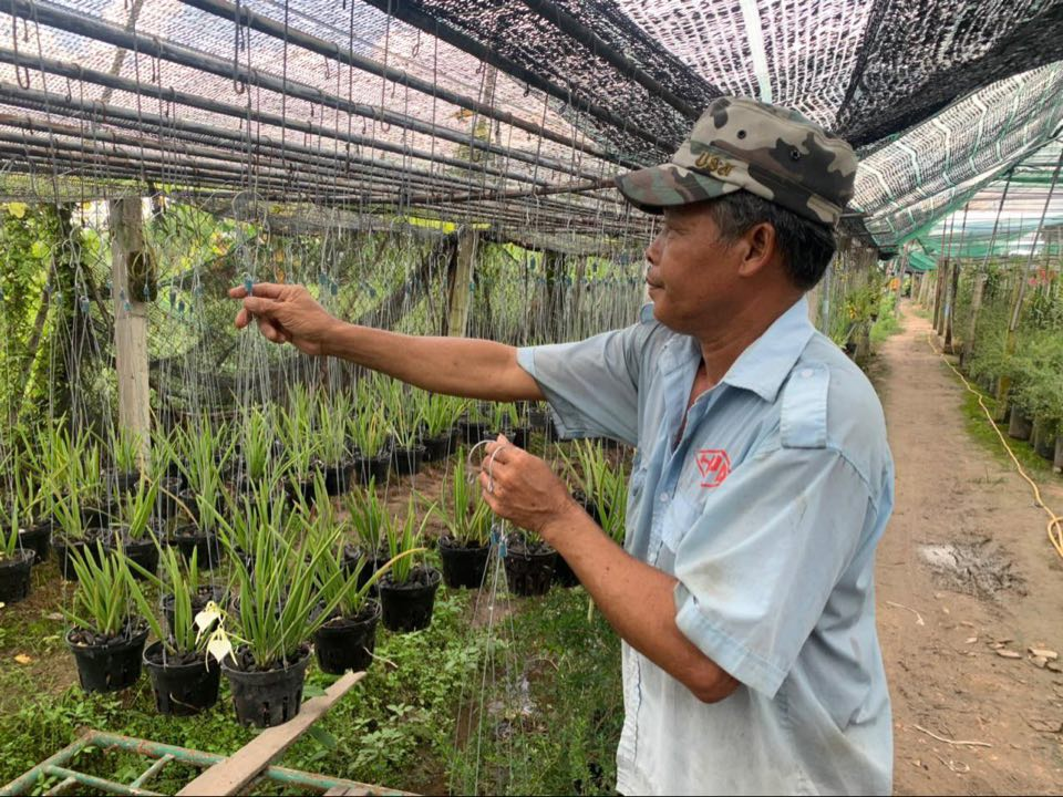 TP. Hồ Chí Minh triển khai giải pháp hỗ trợ người lao động