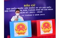 Thường trực Ban Bí thư Võ Văn Thưởng bỏ phiếu tại khu vực bỏ phiếu số 71, Phường 15, Quận Phú Nhuận