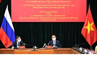 Bí thư Thành ủy Nguyễn Văn Nên họp trực tuyến với Thống đốc thành phố Saint Petersburg