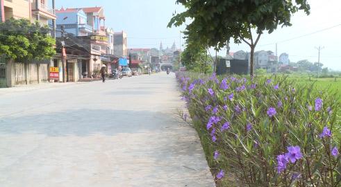 Bảo vệ môi trường trong xây dựng nông thôn mới ở Quế Võ