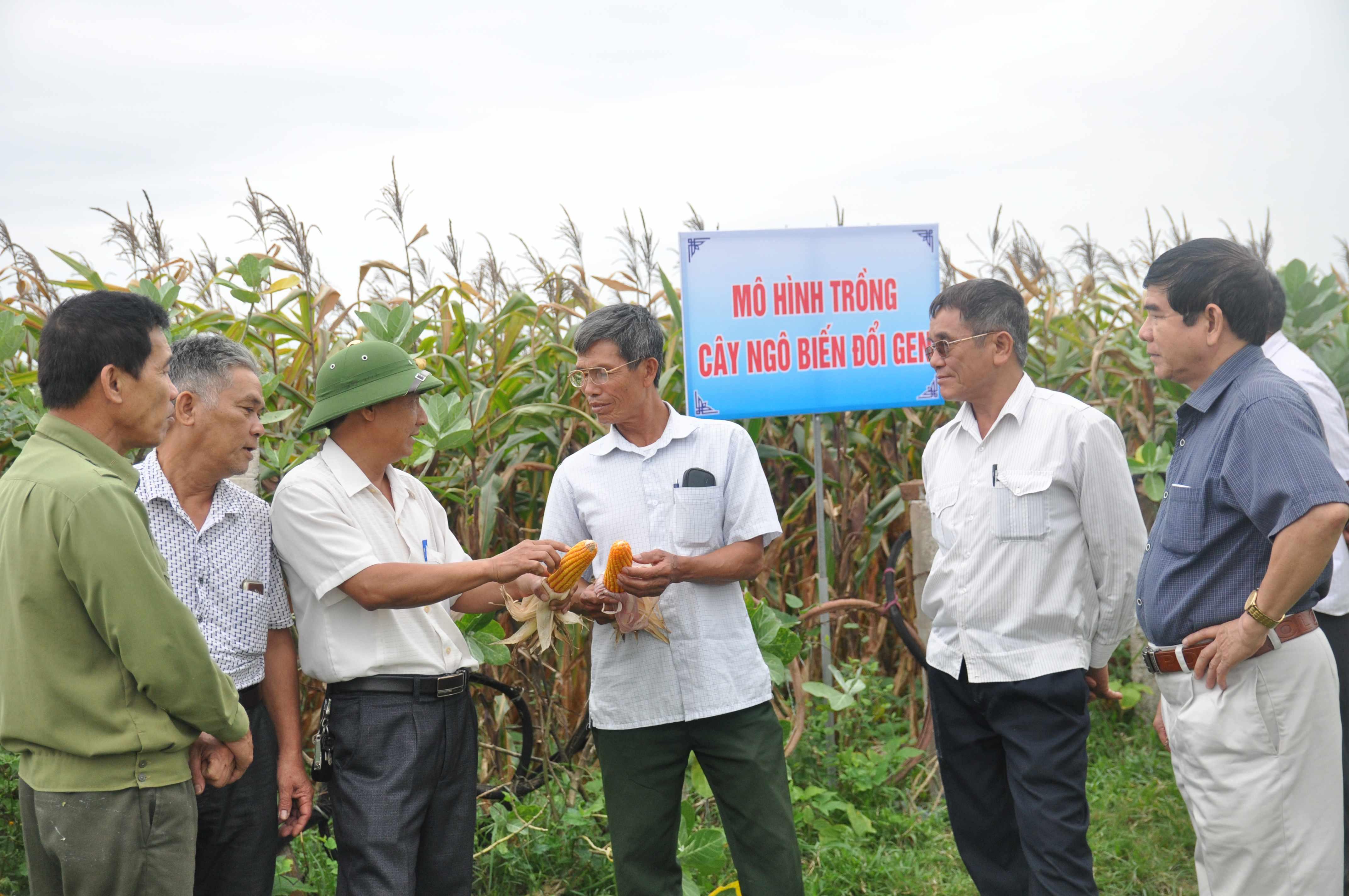 Đổi tên Trung tâm Khuyến nông thành Trung tâm Khuyến nông và Phát triển nông nghiệp công nghệ cao