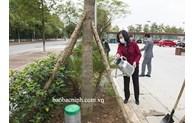 Lãnh đạo tỉnh dự Tết trồng cây tại một số đơn vị, địa phương