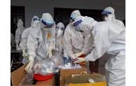 CDC Bắc Ninh được WHO công nhận đạt ngoại kiểm xét nghiệm sinh học phân tử SARS-CoV-2