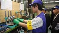 Từ 28/3, lao động Việt Nam tạm dừng nhập cảnh vào Nhật Bản