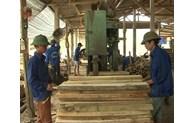 Bắc Giang: Hiệu quả chương trình cho vay từ Quỹ quốc gia về việc làm