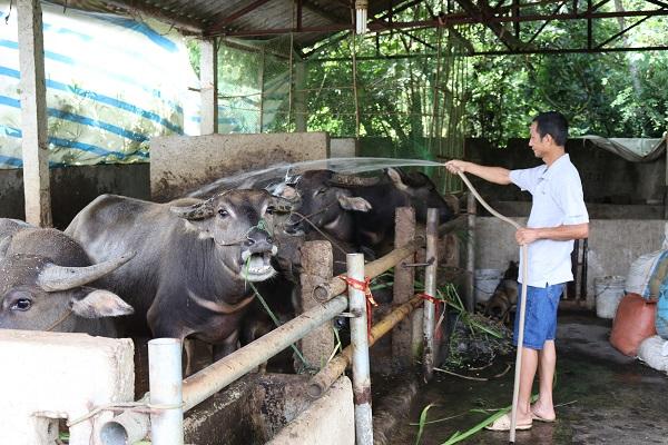 Đẩy mạnh công tác giải quyết việc làm cho lao động tại Điện Biên