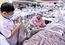 Các chính sách hỗ trợ người lao động gặp khó khăn do đại dịch COVID-19