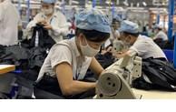 Tình hình Lao động việc làm quý II và 6 tháng đầu năm 2021