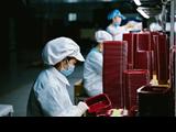 Gần 48.000 lao động tạm hoãn hợp đồng lao động, nghỉ việc không hưởng lương do dịch COVID-19 được hỗ trợ