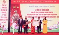 Xã Yên Viên, huyện Gia Lâm đón nhận danh hiệu xã đạt chuẩn nông thôn mới nâng cao năm 2020