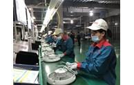 Hà Nội: Gần 19.000 tỷ đồng tiền thuế, tiền thuê đất được gia hạn hỗ trợ doanh nghiệp