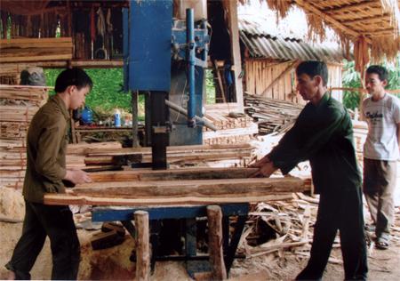 Yên Bái: Chú trọng đào tạo nghề cho lao động nông thôn