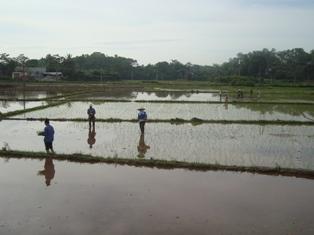 Hội nông dân Yên Thế giúp hội viên xóa đói giảm nghèo