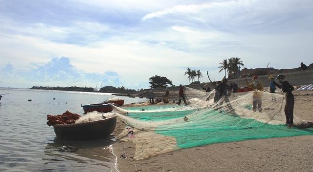 Nhiều chính sách hỗ trợ phát triển huyện đảo Lý Sơn